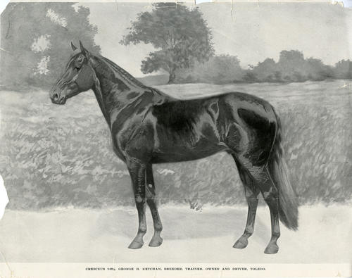 Cresceus 2:02 1/4 George H. Ketcham, Breeder, Trainer, Owner and Driver, Toledo. This is a reproduced photo of a painting of a legendary Toledo Race Horse. It's age is shown in the tattering of the edges of the paper.