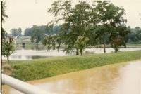 1963 Flood on UT Campus