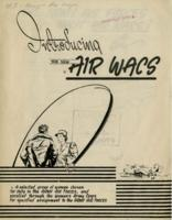 Introducing the New Air WACS