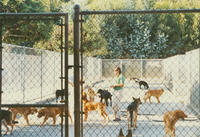 ADAI Training Center Kennel