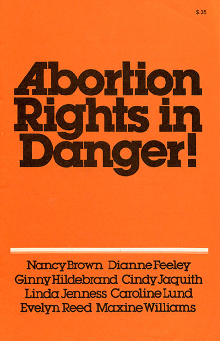 Abortion rights in danger flyer