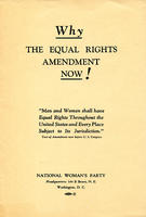 Why: The Equal Rights Amendment Now!