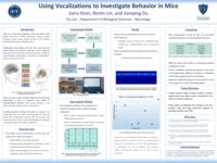 Using Vocalizations to Investigate Behavior in Mice